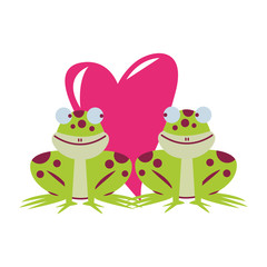 Frogs couple in love