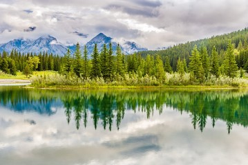Wall Mural - View at the nature near Vermillion lakes in Banff National Park - Canadian Rocky Mountains