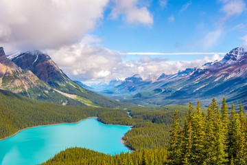 Wall Mural - View at the Peyto lake and the north mountain massif from Bow Summit in Canadian Rocky Mountains - Banff National Park