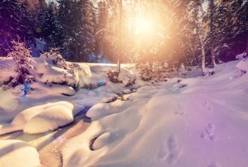 Winter landscape . Nature Background