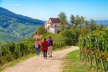 Wanderung zum Schloss Staufenberg bei Durbach, Schwarzwald