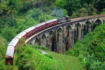 Obraz Train passing arched bridge in Ella, Sri Lanka. Nine arches bridge in Ella. Green landscapes around train - fototapety do salonu