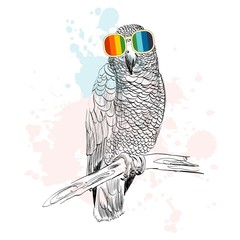 Vector sketch of parrot with glasses. Retro illustration