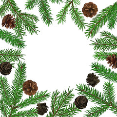 Background with realistic green fir tree branch and cones. Place for text, congratulation. Christmas, New Year symbol.