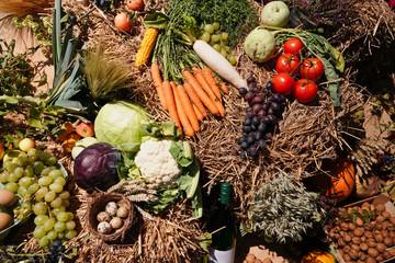 Erntezeit Erntedank für viele Gemüsesorten
