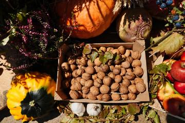 Frische Walnüsse und Kürbisse von der Herbsternte