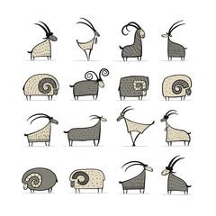 Fototapeta premium Kolekcja kóz i baranów do projektowania