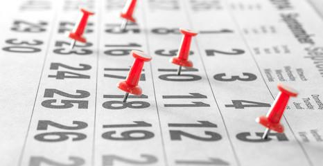 Terminverwaltung - Push Pins markieren gebuchte Tage im Kalender