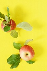 Red fresh apple on a yellow background. Close-up, copy space