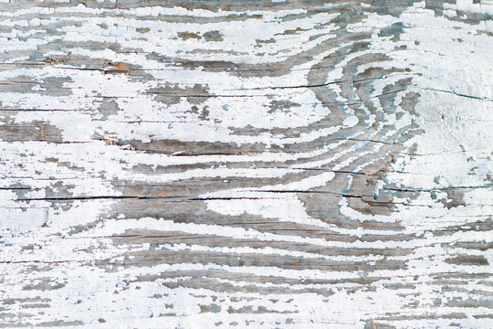 Old board with peeling white paint. Wooden rustic background.