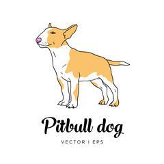 Vector editable sketch of a cute pit bull puppy dog. Isolated on a white background.