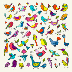 Birds collection, sketch for your design