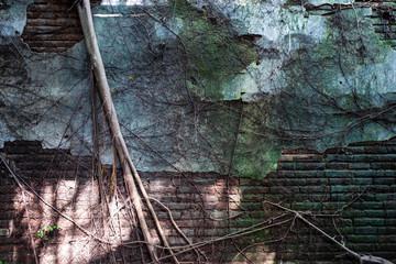 The Anping Tree House in Tainan, Taiwan.