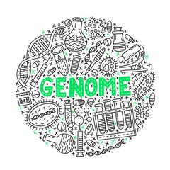Genome. Circle doodle Illustration