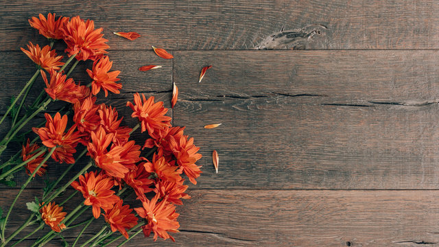 Autumn Orange Flowers on Rustic Dark Wood Background