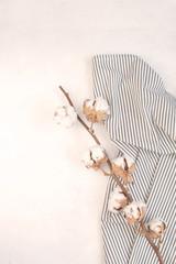 Minimal autumn decor concept - Dried cotton branch on Crumpled Striped Napkin, white background.