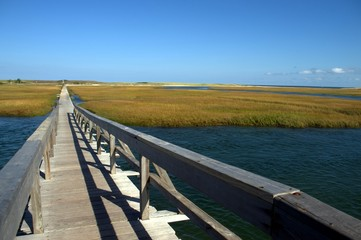 Cape Cod Nature Boardwalk, Sandwich MA