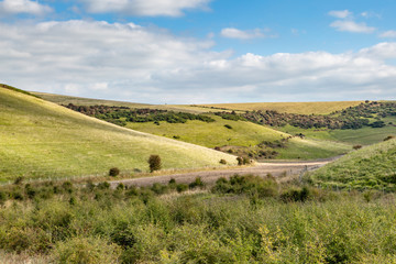 Green fields and hills in the South Downs, on a sunny autumn day