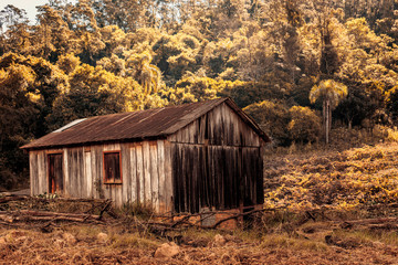 Rural view of an abandoned shed