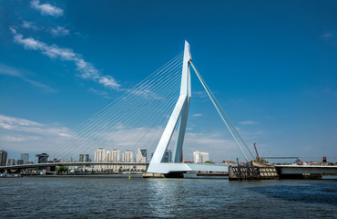 Photo sur Aluminium Rotterdam Rotterdam with Erasmus Brug