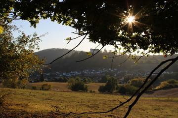 Fotografie Landschaft im Fischbachtal in Hessen