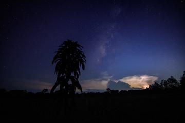 Milkyway and Lightning Sky at night