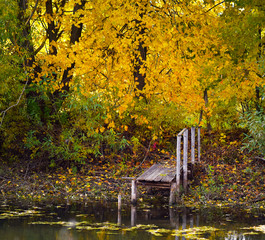 wooden walkways going into the water on the background of autumn trees