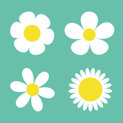 Camomile set. Four white daisy chamomile icon. Cute round flower plant collection. Love card symbol. Growing concept. Flat design. Green background. Isolated.