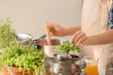Woman picking fresh basil while cooking in kitchen