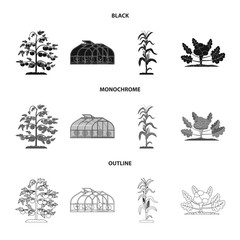 Isolated object of greenhouse and plant logo. Set of greenhouse and garden stock symbol for web.