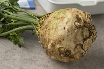 Fresh picked celery root