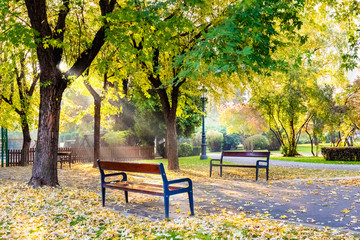 Autumn scene outdoor in Titulescu park of Brasov city, Romania