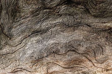 brown color for abstract background, wood texture winding lines randomly arranged on the surface of the wood