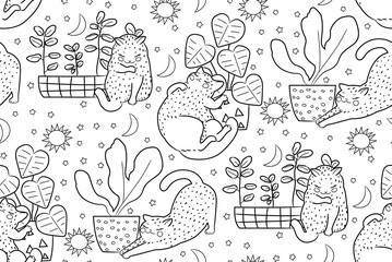 Hand drawn vector seamless pattern cats outline drawing illustration monochrom. Coloring book