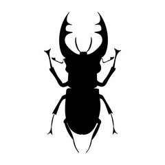 vector, isolated, silhouette insect bug