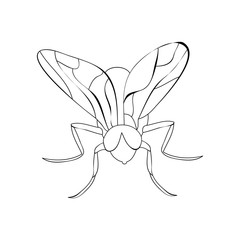 book coloring fly