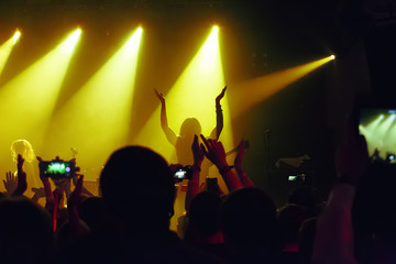 audience at concert at nightclub