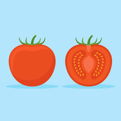 Tomato and slice isolated on blue background. Flat style icon. Vector illustration.
