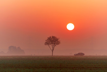 A car on a country road at sunrise in autumn