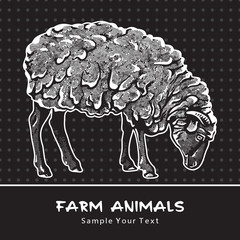 Sheep standing isolated on a black - vector graphic illustration. Beautiful drawing portrait of a farm animal. Black and white picture is a design element and clip art.