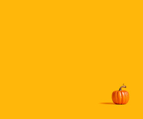 Autumn orange pumpkin on an orange background