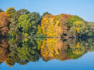 Wasserspiegelung im Herbst am See