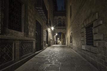Bisbe Street of Barcelona