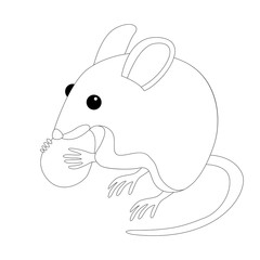 mouse with nut vector illustration