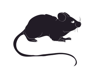 mouse stands drawing silhouette, vector