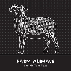 Goat standing isolated on a black - vector graphic illustration. Beautiful drawing portrait of a farm animal. Black and white picture is a design element and clip art.