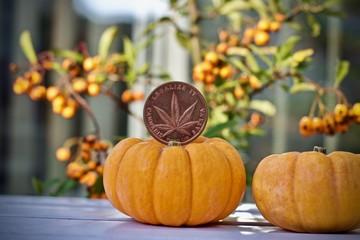 Marijuana halloween coin