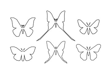 Set of icons of various moth isolated on white