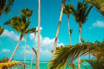 Dominican Republic, Punta cana, Saona Island - Mano Juan Beach. Fishermen's village