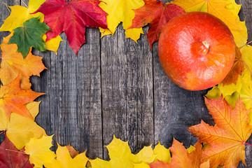 Pumpkin on Maple leaves background